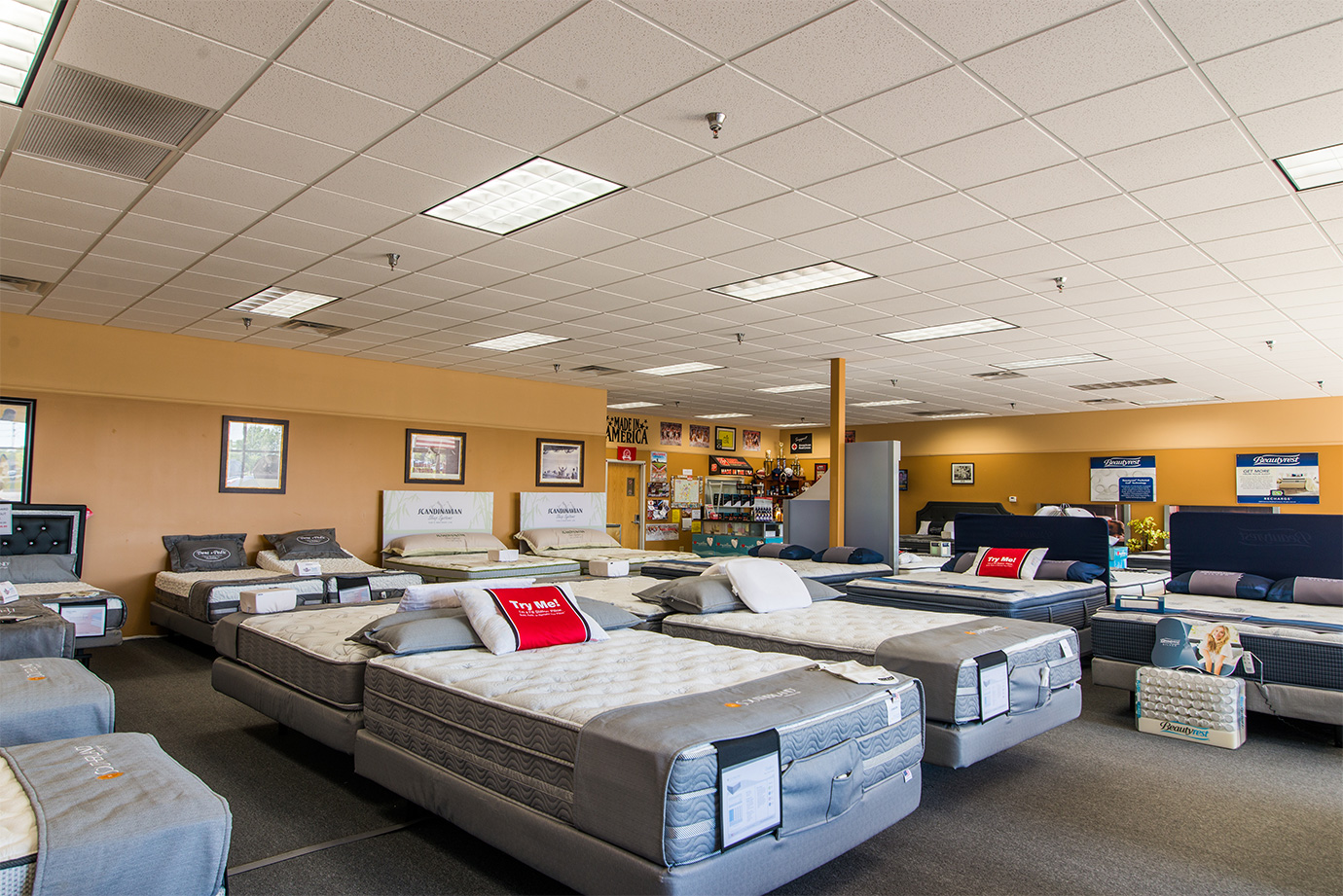 Showroom Trent Bedding Company Bowling Green Ky
